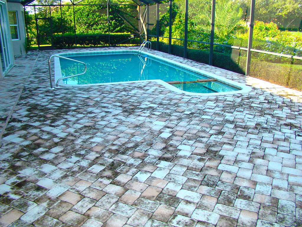Pool Paver Cleaning Before